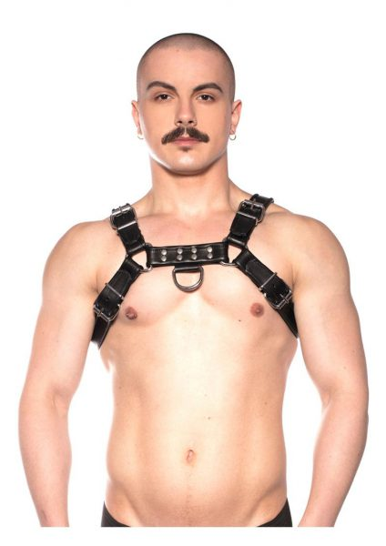 Prowler Red Bull Harness Black Lg