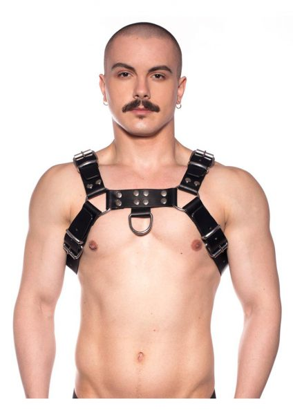Prowler Red Butch Harness Blk/silv Md